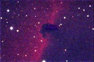 125284060218_IC 434 - testa di cavallo